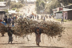 Woman and child with heavy loads, Ethiopia. OROMIA, ETHIOPIA: NOVEMBER 7, 2014- Unidentified woman and child carry heavy loads of branches in Oromia, Ethiopia Stock Photos