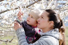 Woman with child near the blossom tree Stock Photos