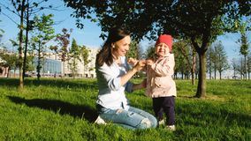 Woman and child are playing in nature. Cheerful mother tickles blade of grass child face stock photo