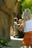 Woman and children outdoors. Woman and young boy with young girl in foreground, outside near rocks and tropical plants, caucasian/white Stock Photo