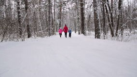 Woman and children run in the winter forest. Slow motion. Woman and two his children hold hands and run in the winter forest. Slow motion stock video