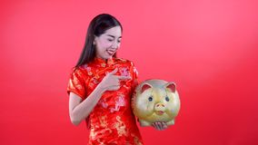 Woman in qipao chinese dress. Woman with chinese dress holding golden pig and turn face up to copyspace isolated on red background stock video