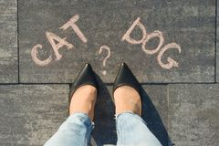 Woman before the choice cat or dog. View from above, female feet with text cat dog written on grey sidewalk. royalty free stock photos