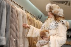 Woman chois fur coat. Attractive young woman in a fur coat Stock Image