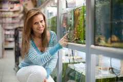 Woman chooses  fish tank Royalty Free Stock Photo