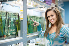 Woman chooses  fish in tank Royalty Free Stock Photo