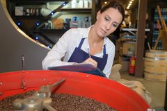 Woman choosing coffee beans best quality. Woman choosing the coffee beans of the best quality Stock Images