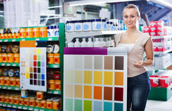 Woman choosing color for painting using palette scheme Stock Photography
