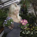 Woman choosing between flowers. Woman choosing flowers in a greenhouse royalty free stock photo