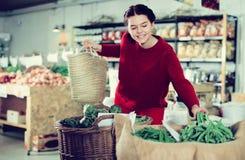 Woman choosing green beans Stock Images