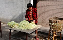 Pengzhou, China: Woman Slicing Cabbages Royalty Free Stock Photos