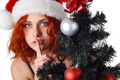 Woman with christmas tree Stock Photos