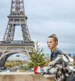 Woman with Christmas tree in Paris looking into the distance Royalty Free Stock Photos