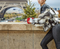 Woman with Christmas tree in Paris looking into the distance Royalty Free Stock Photography