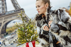 Woman with Christmas tree in Paris looking into the distance Royalty Free Stock Images