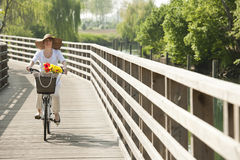 Woman ciclying on a bridge. Woman ciclying on a wooden bridge Stock Photo