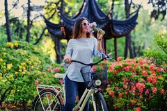 A woman with city bicycle near traditional chinese pavilion in a park. Portrait of attractive female with city bicycle near traditional chinese pavilion in a Royalty Free Stock Photography