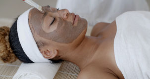 Woman With Clay Facial Mask In Spa Stock Photos