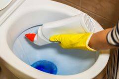 Woman clean toilet bowl stock image
