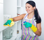 Woman clean up house Stock Photography