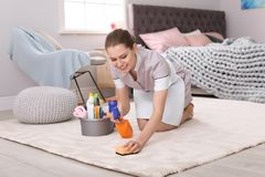 Woman cleaning carpet. In bedroom stock photos