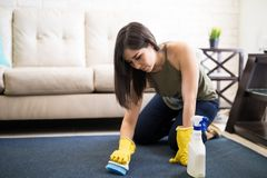 Woman cleaning carpet with brush and cleaner. Young housewife in yellow rubber gloves cleaning carpet with brush Stock Photo
