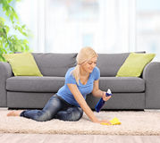 Woman cleaning a carpet with a rag at home. Young blond woman cleaning a carpet in front of a gray sofa with a rag at home shot with tilt and shift lens stock photo