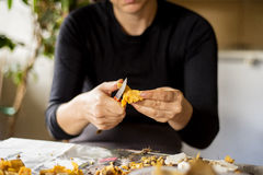 Woman cleaning chanterelles Royalty Free Stock Image