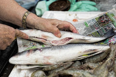 Woman cleaning fish on the street food market royalty free stock image