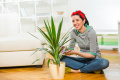 Woman cleaning flowers in the pot Stock Photos