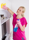 Woman cleaning home Royalty Free Stock Image
