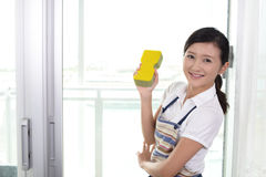 Woman cleaning the house Stock Photography