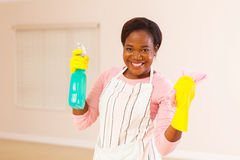 Woman cleaning house Stock Photography
