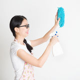 Woman Cleaning House royalty free stock images