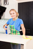 Woman cleaning kitchen Stock Image