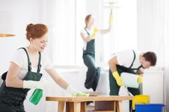 Woman cleaning table. Woman in white gloves cleaning a wooden table in bright room stock images