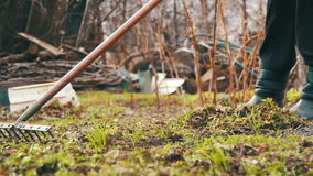 Woman is cleaning the weeds in the garden with rake tool. slow motion stock video footage
