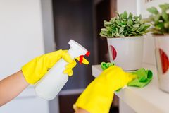 Woman cleaning white shelf Stock Images