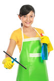 Woman cleaning windows Royalty Free Stock Image