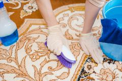 The woman cleans a carpet. The young woman cleans a house carpet from dust and dirt. Purity in the house. Stock Photo