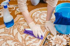 The woman cleans a carpet. The young woman cleans a house carpet from dust and dirt. Purity in the house. Stock Images