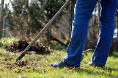 Woman cleans the garden in early spring.  Royalty Free Stock Photography