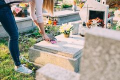 A woman cleans the grave. Royalty Free Stock Photography