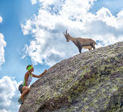 Woman climber encounters an ibex Royalty Free Stock Image