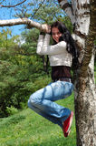 Woman climbing birch tree Stock Photos