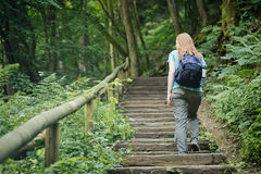 Woman Climbing Stairs in a Forest Stock Image