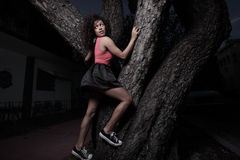 Woman climbing a tree Royalty Free Stock Photography