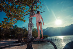 Woman climbing tree on tropical beach Royalty Free Stock Photo