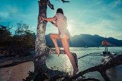 Woman climbing tree on tropical beach Stock Photo