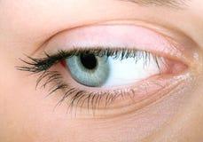 Woman Close-up. Eye of beautiful women close-up Royalty Free Stock Image